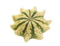Cream and green striped ornamental gourd, Crown of Thorns Royalty Free Stock Photo