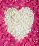 Cream heart in pink rose petals Royalty Free Stock Photos