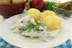 Cream herring Stock Photography