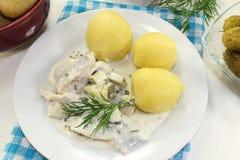 Cream herring Stock Image