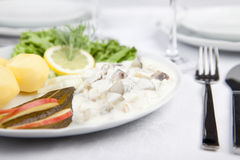 Cream herring with cucumber, potatoes and salad Royalty Free Stock Photography