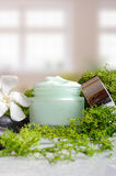 Cream jar algae vertical view Royalty Free Stock Image