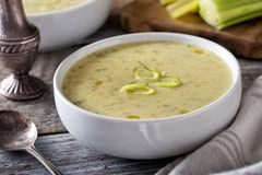 Cream of Leek Soup. A bowl of delicious hot cream of leek soup on a rustic table top royalty free stock image