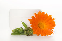 Cream from marigold medical. Royalty Free Stock Images