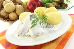 Cream marinated herring with dill Royalty Free Stock Images