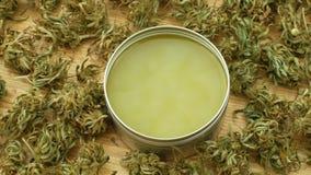 Cream medicinal cannabis hemp and cannabidiol CBD harvested dried of seeds quality for production of ointments, relieves. Cream medicinal cannabis hemp and stock video