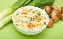 Cream of Mushroom and Leek soup Stock Photography