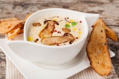 Cream of mushroom soup Stock Image