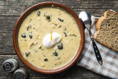 Cream of mushroom soup. Stock Image