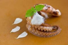 Cream octopus Stock Photos