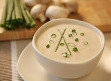 Cream Of Mushrooms Stock Images