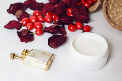 Cream, petals of rose and rose hips Stock Image