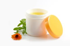 Cream pot. With marigold on white background royalty free stock photography