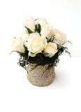 Cream roses. Shot of some silk roses in a stone pot royalty free stock images