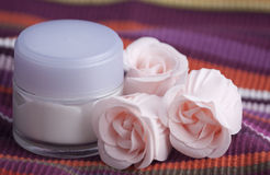 Cream and roses Royalty Free Stock Images