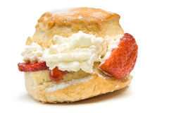 Cream Scone Stock Image