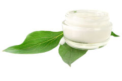 Cream Skin Care cosmetic bio Royalty Free Stock Images