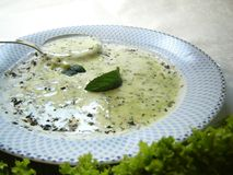 Cream soup. Green creamy vegetable soup with spinach and parsley and mint and lettuce as decoration royalty free stock photography