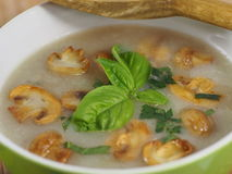 Cream soup with champignon Stock Images