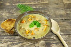 Cream soup with chanterelle Stock Photos
