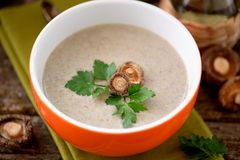 Cream soup from dried mushrooms shiitake with chicken and potatoes. Royalty Free Stock Photography
