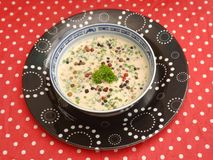 Cream soup with herbs Stock Image