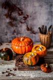 Cream Soup in Hollowed Pumpkins. Pumpkin Cream Soup in Hollowed Pumpkin Bowls, copy space for your text Stock Images