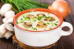 Cream soup with mushrooms Stock Photos