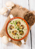 Cream soup with mushrooms Stock Images