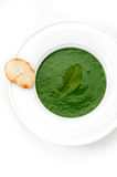 Cream soup Spinach Stock Photo