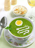 Cream soup on a table. Cream soup with egg, sour cream and wine on the table, studio shot Royalty Free Stock Images