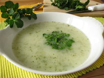 Cream soup with watercress Stock Photo