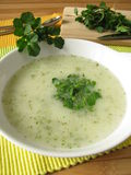 Cream soup with watercress Stock Photography