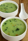 Cream of Spinach Soup Stock Photo