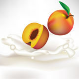 Cream splash with apricot Royalty Free Stock Photo