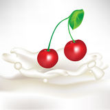 Cream splash with cherry Stock Images