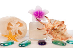 Cream with stones flowers and sponge Royalty Free Stock Photography