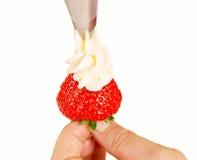 cream strawberry wipped 库存照片
