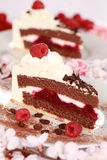 Cream tart with raspberries Stock Images