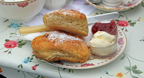Cream Tea royalty free stock photo