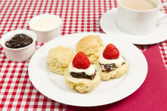 Cream tea. A traditional Cornish cream tea Royalty Free Stock Photos