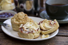 Cream tea. Traditional cream tea with scone, clotted cream and jam Royalty Free Stock Image