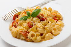 Cream and tomato pasta with fork Royalty Free Stock Image