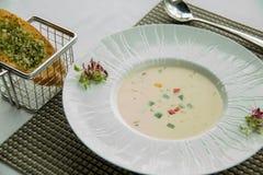 Cream of vegetarian soup ready to serve. A Cream of vegetarian soup ready to serve royalty free stock photos