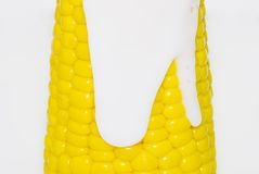 Creamcorn. Portion of fresh corn on white , yellow , texture Royalty Free Stock Photography