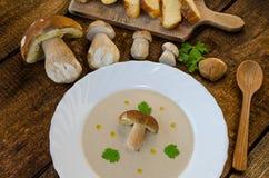 Creame da sopa de cogumelos fotos de stock