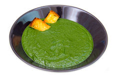 Creamed spinach and croutons Stock Photography
