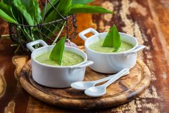 Creamy bear leek soup with ingredients royalty free stock image