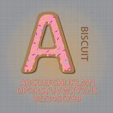 Creamy Biscuit Alphabet and Numbers Vector Royalty Free Stock Images