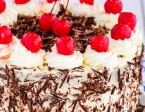 Creamy Blackforest cake Stock Photography
